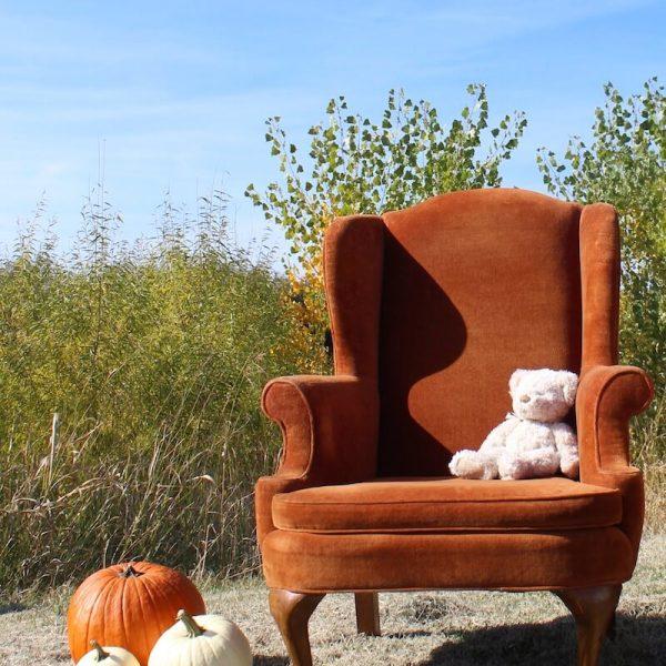 Chair - Ollie