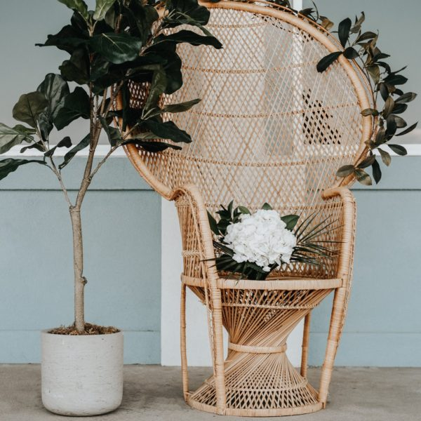 Boho Peacock Chair-Variety