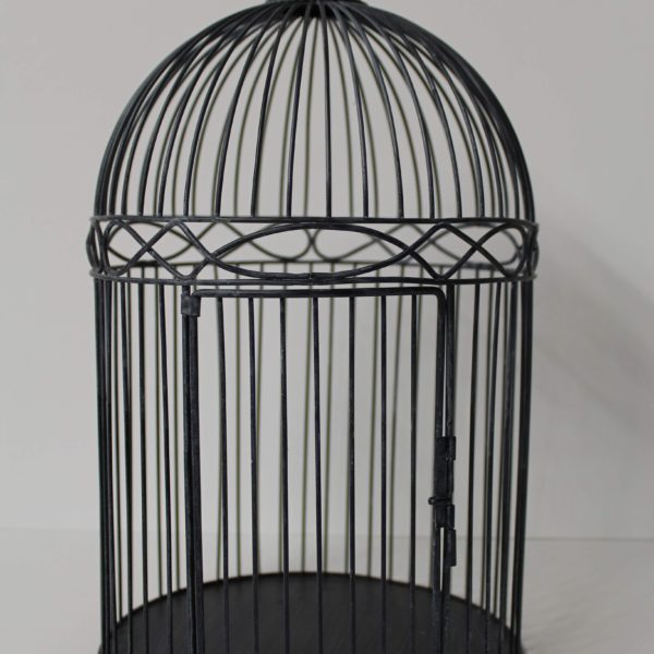 Bird Cage - Blue