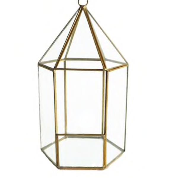 Terrarium - Bird Cage